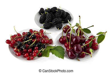 cherry, currant and mulberry
