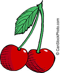 cherry - Hand drawn, vector, cartoon illustration of cherry