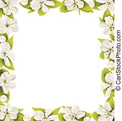 Cherry flowers with pearl beads like frame on white