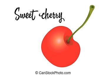 Cherry fruit isolated on white background. Vector Illustration