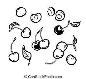 Cherry. Ink hand drawing. Black and white. Food, vegetables and fruit isolated on white background. Book illustration, recipe, menu, magazine or journal article.