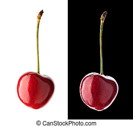 Cherry isolated on white and black