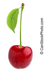Cherry isolated. One red cherry with leaf isolated on white background with clipping path