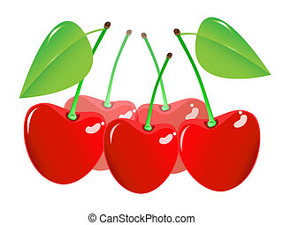 Cherry on a white background. Vector EPS10.