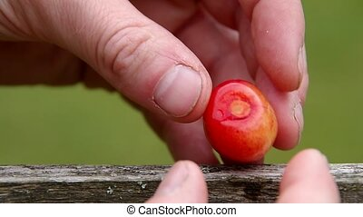 Cherry on a wooden board