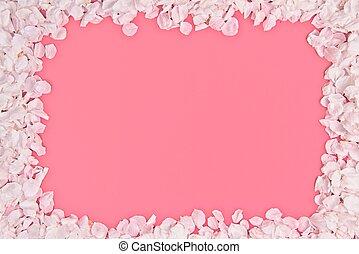 Cherry petals frame