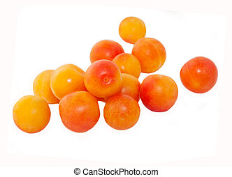 cherry-plum fruit isolated on white