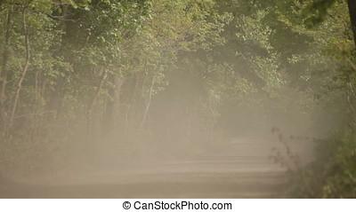 Cherry Sedan Running on Gravel Wood Road Stirring Up Dust -...