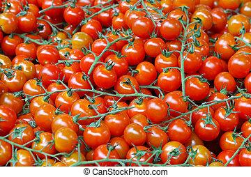 Bunch of fresh organically grown cherry tomatoes