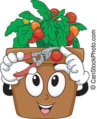 Cherry Tomatoes Mascot