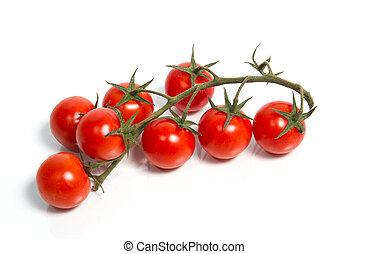 Fresh cherry tomatoes on vine. Isolated.