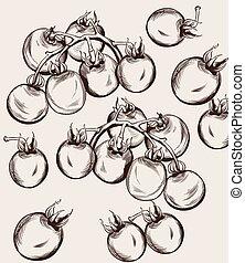 Cherry tomatoes vector line art. Autumn fall harvest illustrations