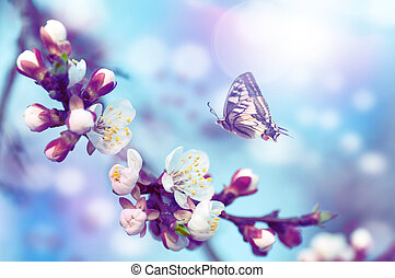 cherry tree flowers, butterfly flies on a flower, blue tint background