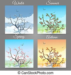 Cherry tree in a different seasons