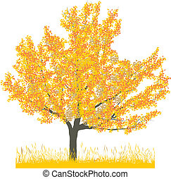 Vector illustration of cherry tree in autumn