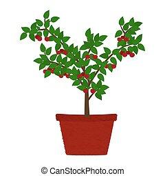 Cherry tree in vase