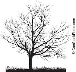 Cherry tree in winter - Vector illustration of cherry tree ...
