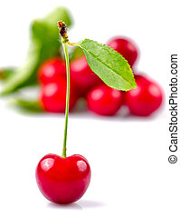 Cherry with green leaf