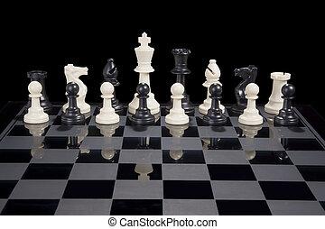 chess, diversity, hvid konge