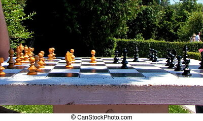 Chess Game Timelapse Speed Park