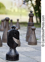 Chess great outdoors in a park - focus on the front figure