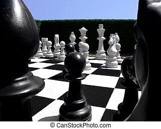 Chess in a garden