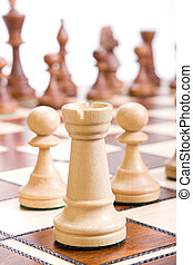 Chess isolated on white background.