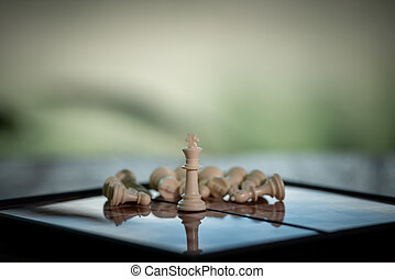 Chess on a Board of wood. nature background. game, strategy, management or leadership, business success concept