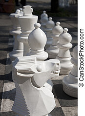 Chess Pieces on a Board in a Park