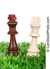 Chess Pieces on Grass