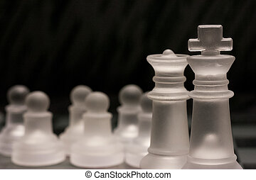 Chess pieces showing concept of family and teamwork