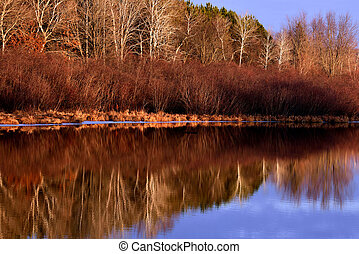 Chester Creek Winter Reflections