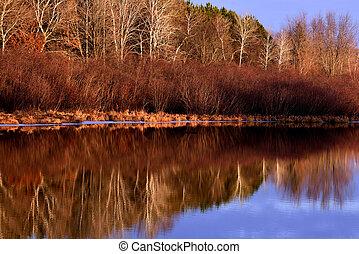 chester, ruisseau, hiver, réflexions