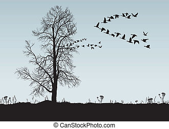 Chestnut and Wild Geese - Vector illustration of autumn...
