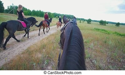 Chestnut horse follows to the group of riders on horseback...