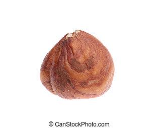 chestnut.