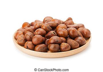 chestnut isolated