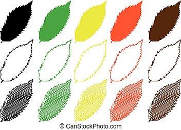 chestnut leaf - color set,