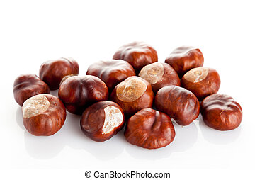 Chestnut on white background