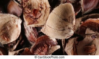 Chestnut peels