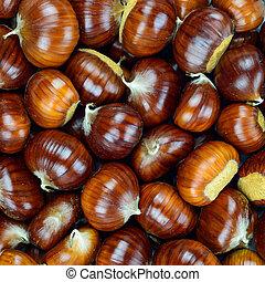 Chestnut raw autumn food, pattern background texture.