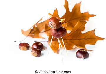 Chestnut toy isolated on white background