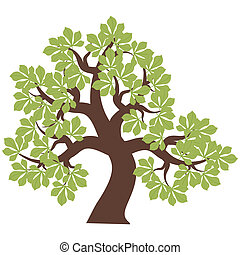 chestnut tree on white background vector illustration