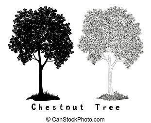 Chestnut tree Silhouette Contours and Inscriptions - ...