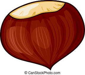 chestnut vector illustration - chestnut illustration