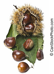 Chestnuts 4.