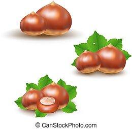 Chestnuts Big Set