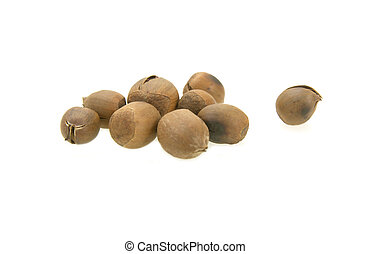 Chestnuts isolated on white background,