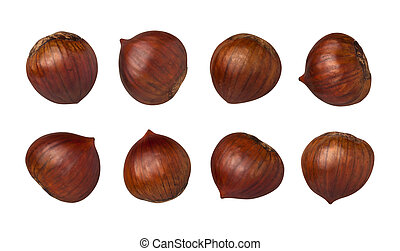 Chestnuts Isolated with clipping path