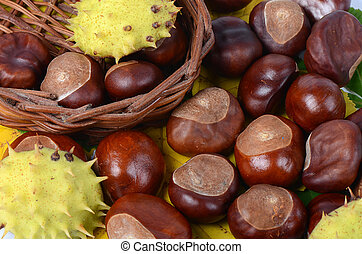 Chestnuts on autumn leaves